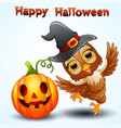 owl cartoon with halloween hat and pumpkin vector image vector image