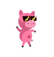 pink funny cartoon baby piglet in sunglasses cute vector image