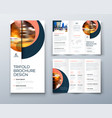 tri fold brochure design with circle corporate vector image vector image