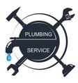 water tap and various repair tools vector image vector image