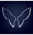Wings sign Flat style icon vector image