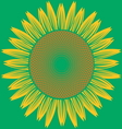 abstract sun flower vector image