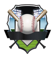 Baseball Badge vector image vector image