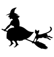 cat a witch vector image vector image