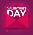 happy valentines day pink envelope on pink vector image vector image