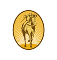 Horse and jockey racing front view vector image vector image