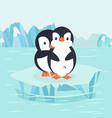 penguin hug in north pole arctic vector image