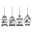 Vintage birdcages with birds vector image vector image