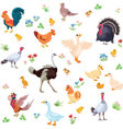 Farm birds and their ducklings in cartoon style as vector image vector image