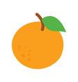 orange fruit with leaf vector image