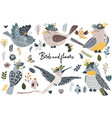 set isolated birds and flowers vector image vector image