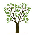 shape tree with leaves fruits and roots vector image vector image