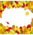 autumn colorful leaves fall backgroun vector image vector image