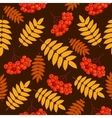 Autumn seamless pattern with rowan vector image vector image