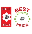 big sale and best spring price announcement vector image
