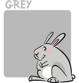 Color Grey and Rabbit Cartoon vector image vector image