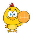 cute yellow chick holding a basketball vector image vector image
