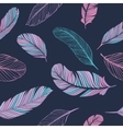 Feathers Color Pattern vector image vector image