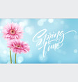 gerbera flower background and spring time vector image