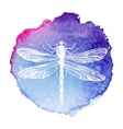hand drawn dragonfly on watercolor background vector image vector image