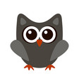 owl funny stylized icon symbol gray colors vector image vector image