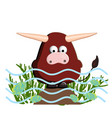 year calf ox character is cute isolated on vector image vector image