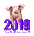 2019 watercolor chinese pig year card vector image vector image