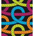 Colorful ropes seamless pattern vector image vector image