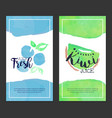 fresh juice banner template set sweet fruits vector image vector image