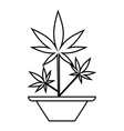 Hemp in pot icon outline style vector image vector image