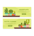 houseplants cactus flowers landing page set vector image vector image