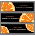 Set of banners with oranges vector image vector image