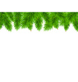 Fir Tree Border vector image