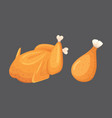 beautiful delicious fried chicken set of vector image vector image