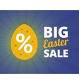 Big easter sale banner vector image