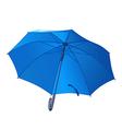 blue umbrella vector image vector image