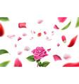 blurred rose petal leaves background 3d vector image