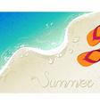 Flip flops Summer time holiday background vector image