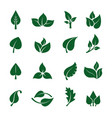 leaves logo stylized green plants for eco vector image vector image