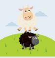sheep jumping over black sheep vector image