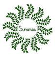 summer decorative frame vector image vector image
