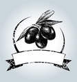 Vintage label with black olives vector image vector image
