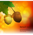 autumn acorn background with sample text vector image vector image