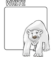 Color White and Polar Bear Cartoon vector image