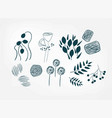 floral doodle set sketch design elements isolated vector image