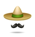 Sombrero And Mustache vector image vector image