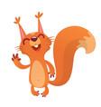 221squirrel vector image vector image