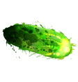 cucumber made colorful splashes on whit vector image vector image