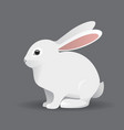 cute white bunny rabbit cartoon vector image