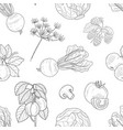 hand drawn vegetables and plants seamless pattern vector image